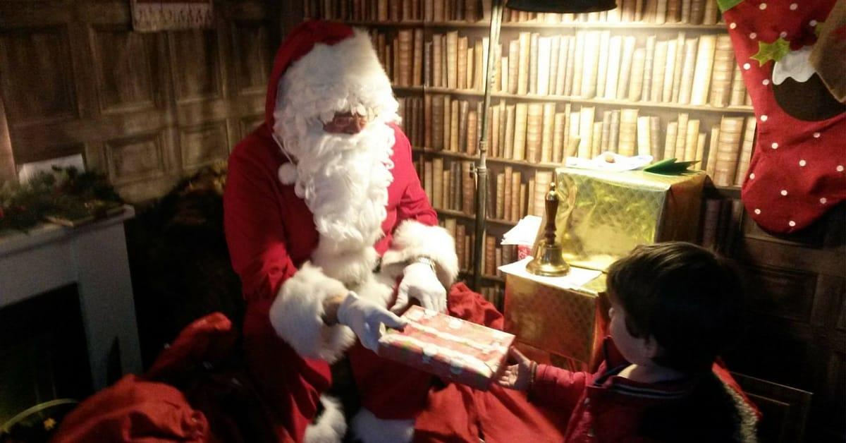 Sussex Country Gardener Tunbridge Wells this Christmas