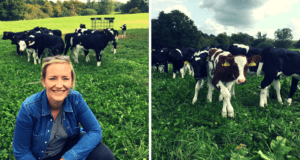 Arla Organic Free Range Milk 1