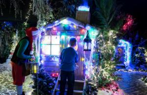 Brookside Garden Centre Christmas Grotto
