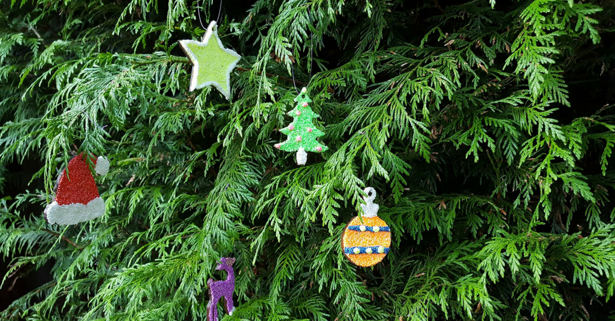 Christmas family days and events in Kent and East Sussex Freckles and Fire