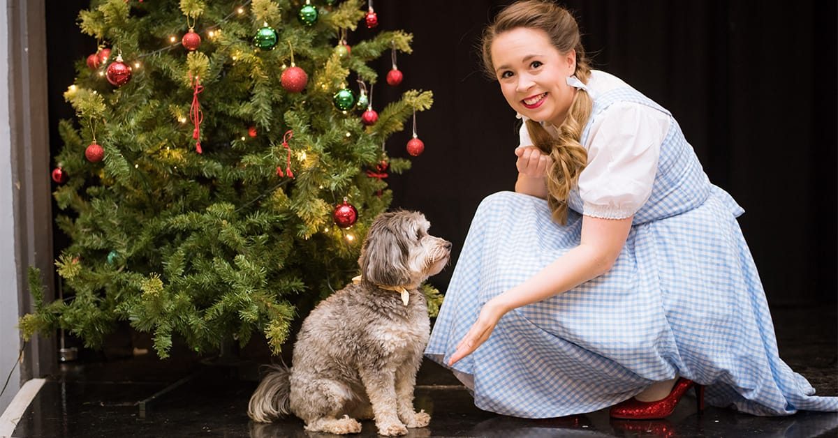 Wizard of Oz Trinity Theatre Tunbridge Wells