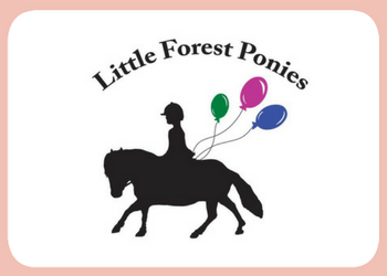 Little Forest Ponies Partner