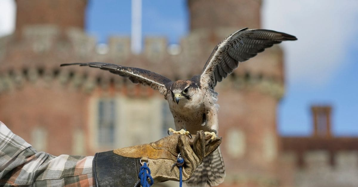 Family fun at Herstmonceux Castle this February Half-Term!