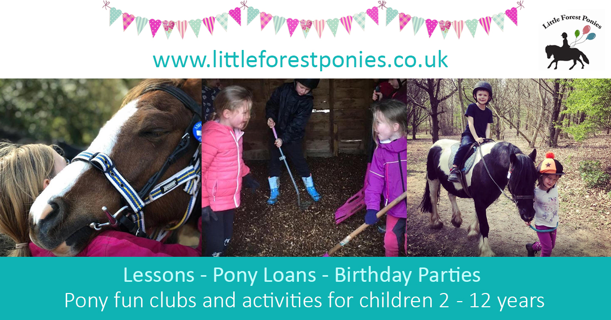 Pony Fun Clubs_Little Forest Ponies