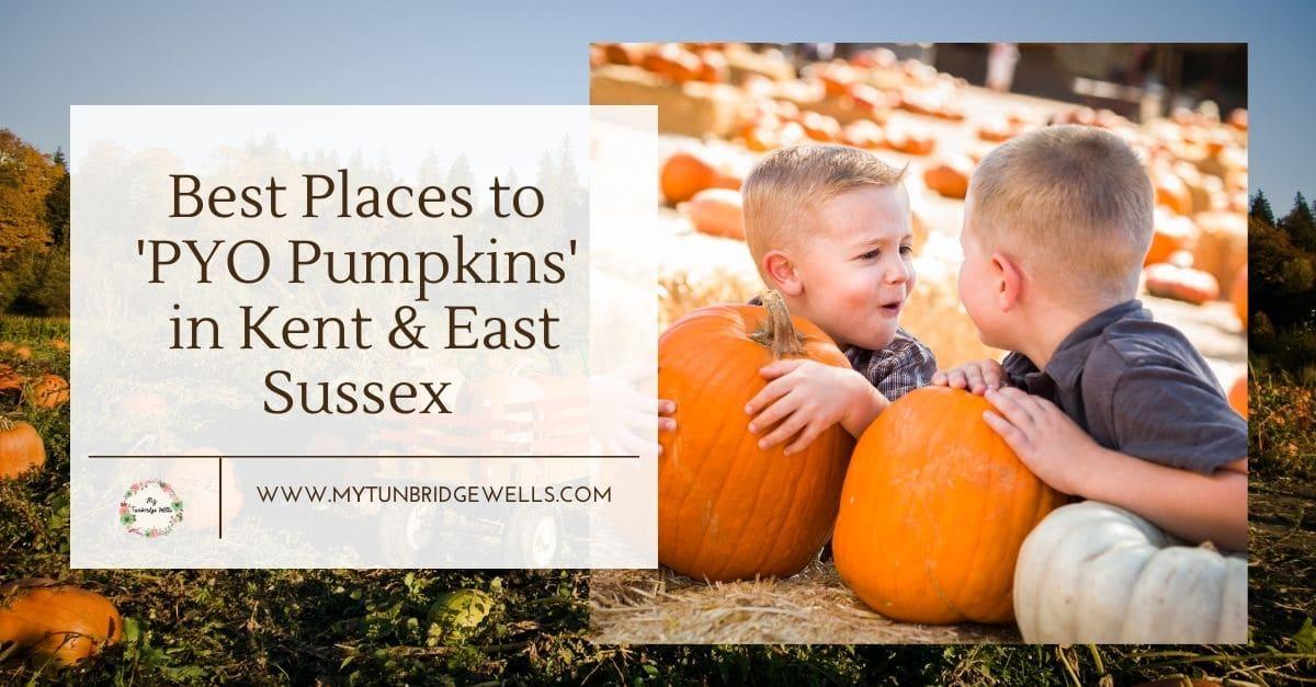 Pumpkins Kent and East Sussex